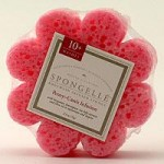 Spongelle Bath and Body