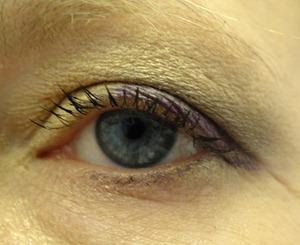 L'Oreal Infallible Eye Look