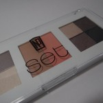 How To Get a Smoky Eye With Target NP Set